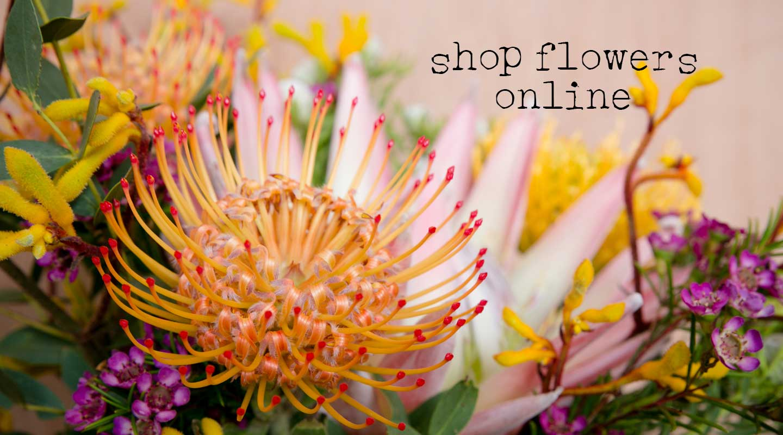 shop-online-banner-sml